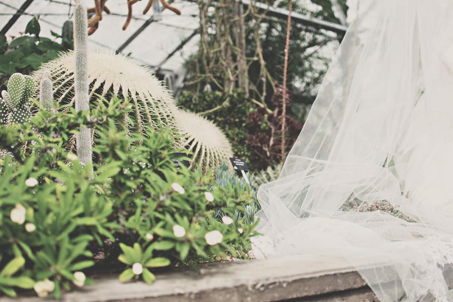 Chronique mariage lyon mariée cactus