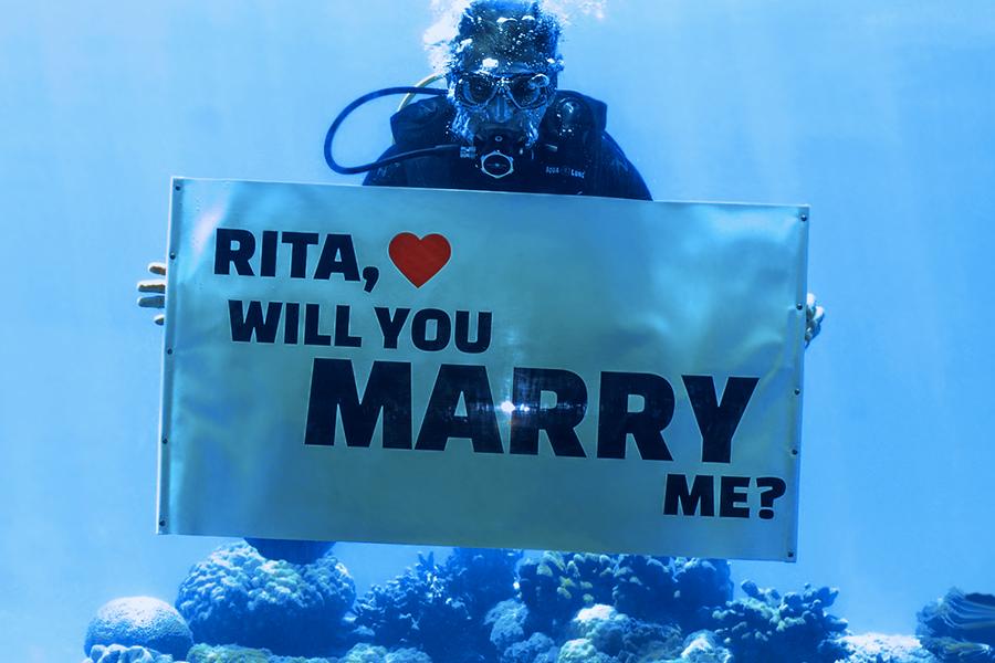 Apoteo Suprise demande en mariage x lyon mariage originales sous marine plongée