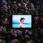 Fleuriste mariage Lyon Atelier Charlotte mur de fleurs violette avec un écran une