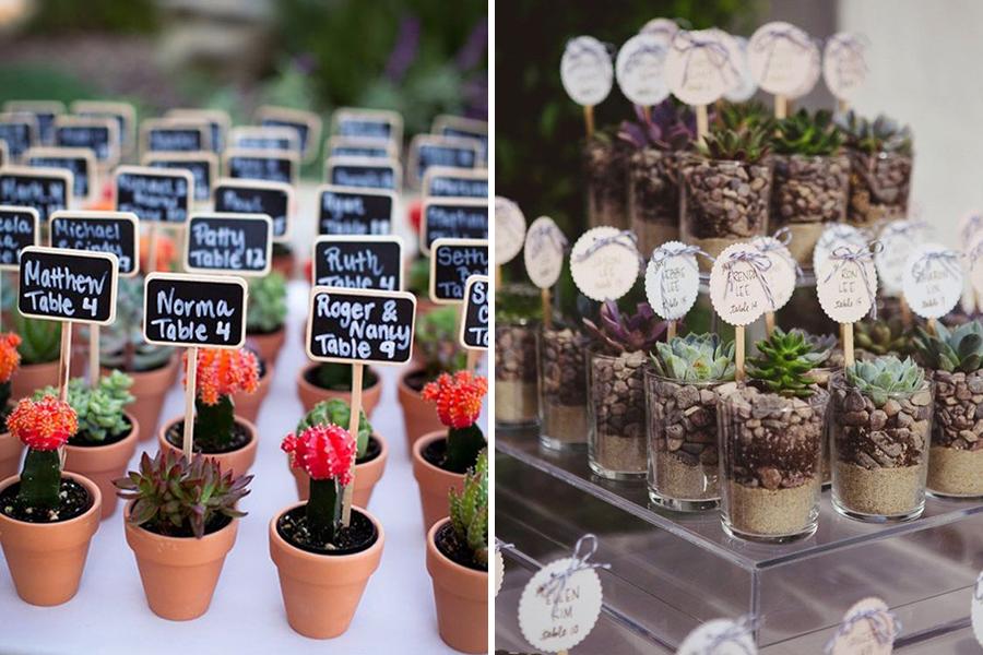 Lyon Mariage plantes grasses et cactus